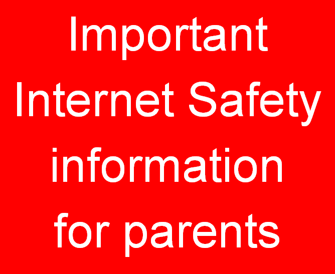 Cyber safety information about the popular game