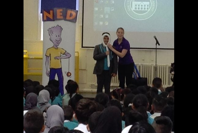 NED show assembly